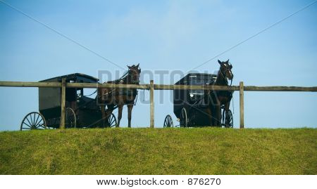 Amish Horse Buggies