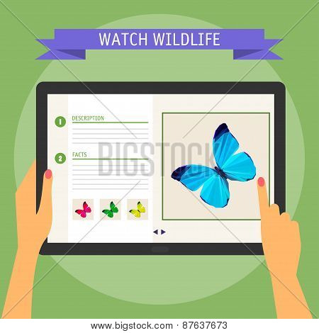 Modern Digital Tablet  With Website About Wildlife. Flat Design Style