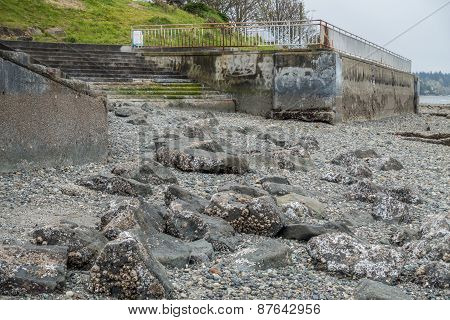 Seawall And Stairway