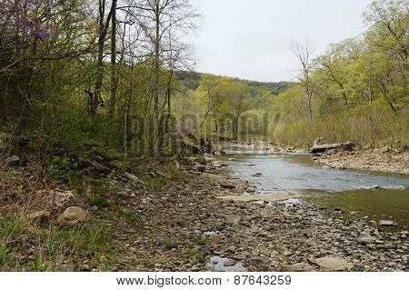 River at Devils Den State Park