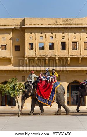 Jaipur, India - December 29, 2014: Decorated Elephant Carries Tourists To Amber Fort In Jaipur