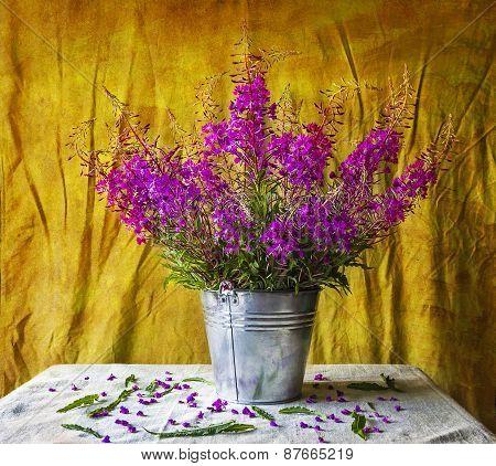 Still Life With Bouquet Purple Wild Flowers