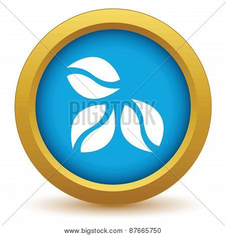 Gold coffee beans icon