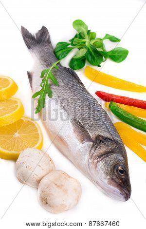 Fresh seabass fish.