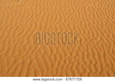 Desert Background