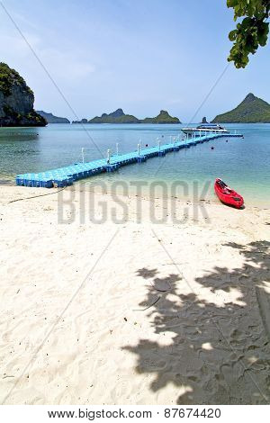 Plastic Pier  Coastline Of A  Green Lagoon And Tree  Phangan   Bay