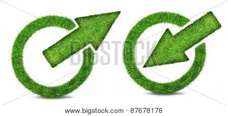 Green Grass Arrow