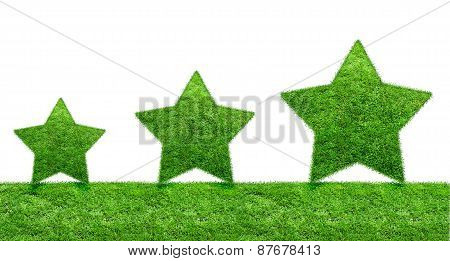 The Green Grass Star