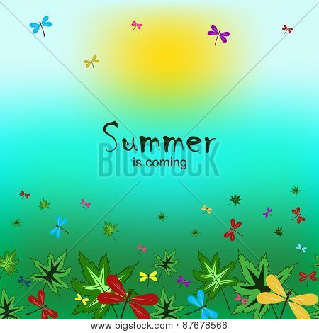 Summer Is Coming-5