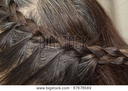 Braid Hairstyle,grey Brown Long Hair Close Up