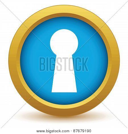 Gold keyhole icon
