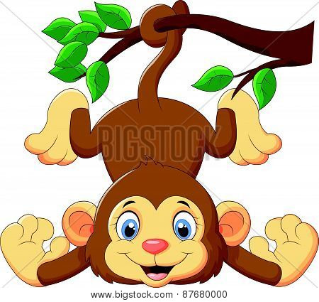 Cartoon funny monkey on a tree