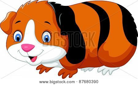 Cartoon cute guinea pig