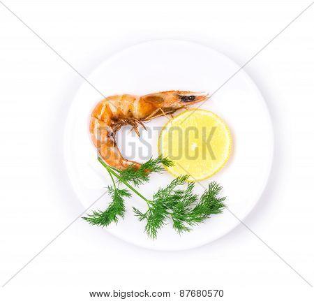 Close up of fresh boiled shrimp.