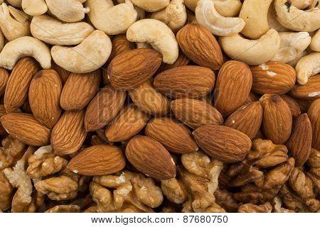 Peanuts, Walnuts, Almonds, Hazelnuts And Cashews Nuts