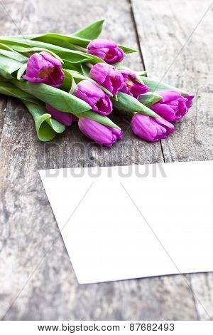 Violet Tulips On The Oak Brawn Table With White Sheet Of Paper 2