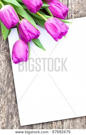 Violet Tulips On The Oak Brawn Table With White Sheet Of Paper 3