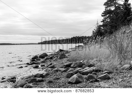 Landscape On Shores Of Lake Ladoga