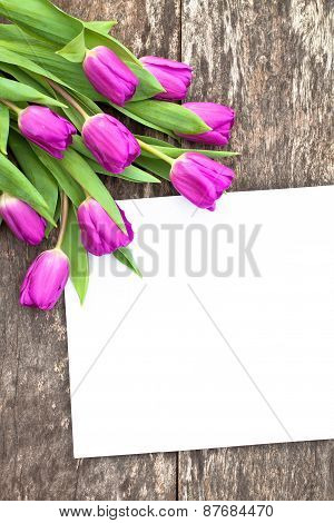 Violet Tulips On The Oak Brawn Table With White Sheet Of Paper 4