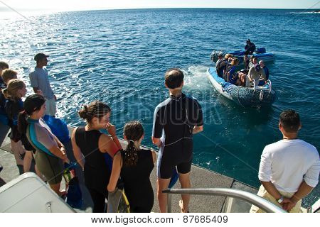 Unidentified tourists on a dinghy going for day tour adventure in the Galapagos Islands