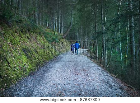 People walking along the paths in the wood around Eibsee lake in Bavarian Alps