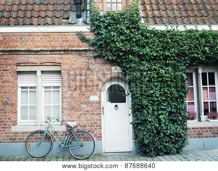 Oldstyle Bicycle In Front Of The Red Brick Wall Of A Building Partilly Covered With Ivy With A Door