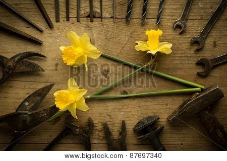 Old Retro Used Tools With Narcissus
