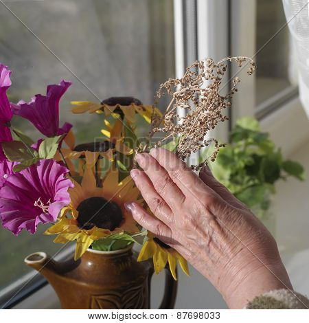 Flowers On A Window Sill