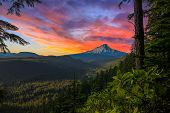 picture of hoods  - Majestic View of Mt - JPG