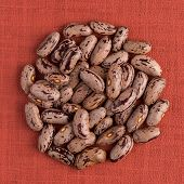 image of pinto bean  - Top view of circle of pinto beans against red vinyl background.