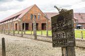 image of auschwitz  - German concentration camp Auschwitz in Poland in summer day - JPG