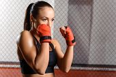stock photo of boxing ring  - Professional fighter - JPG