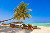 stock photo of beach-house  - Loungers on Maldives beach  - JPG
