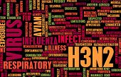 picture of avian flu  - H3N2 Concept as a Medical Research Topic - JPG