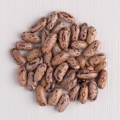 stock photo of pinto bean  - Top view of circle of pinto beans against white vinyl background - JPG