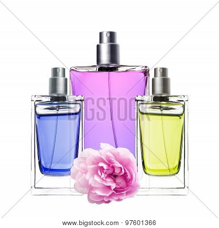 Woman Perfume In Beautiful Bottles And Peony Flower Isolated
