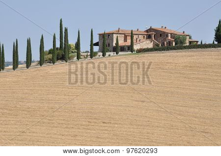 Hill after the harvest  Tuscany , Italy