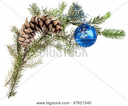 Twig Of Spruce Tree With Cone And Blue Ball