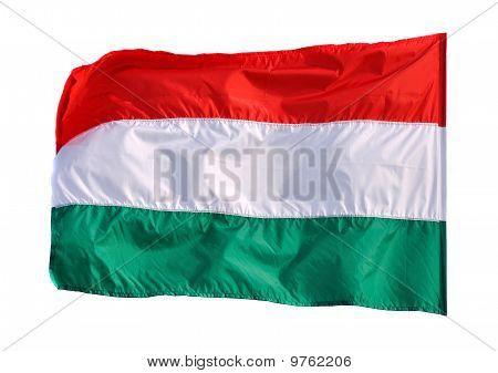 waving Flagge von Ungarn