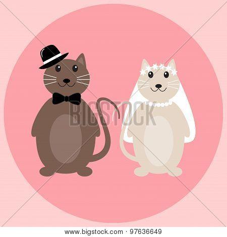 Cute cats wedding