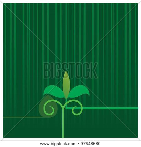 Plant & agriculture