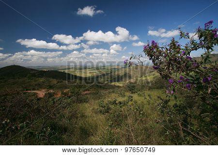 Park National In Brazil