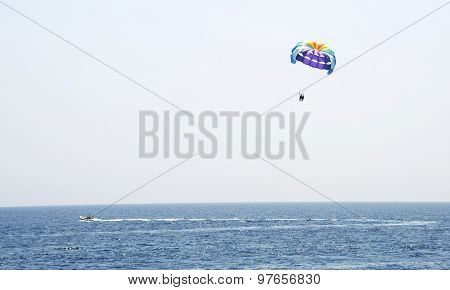 Parachute flying over the sea sunny day.