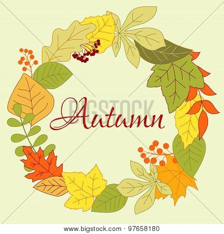 Autumnal leaves frame with berries and seeds