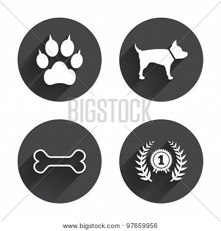 Pets icons. Cat paw with clutches sign.
