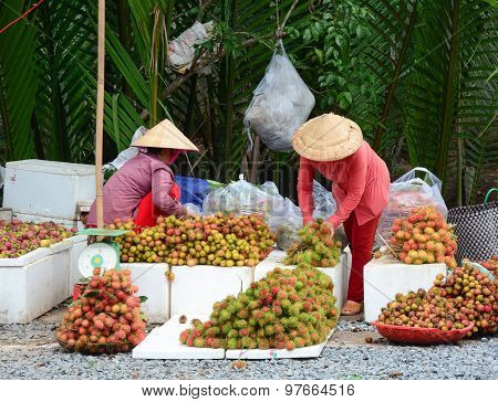 Vietnamese Women Selling Many Tropical Fruits
