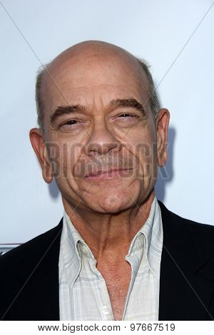 LOS ANGELES - AUG 1:  Robert Picardo at the