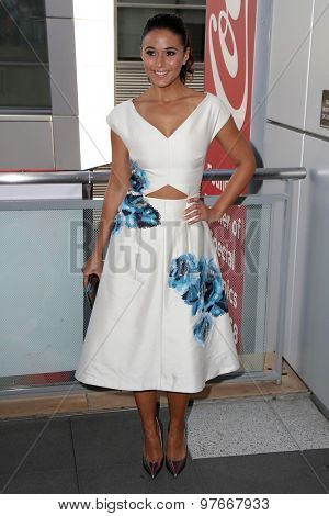 LOS ANGELES - AUG 1:  Emmanuelle Chriqui at the The Dizzy Feet Foundation`s Celebration Of Dance Gala at the Club Nokia on August 1, 2015 in Los Angeles, CA