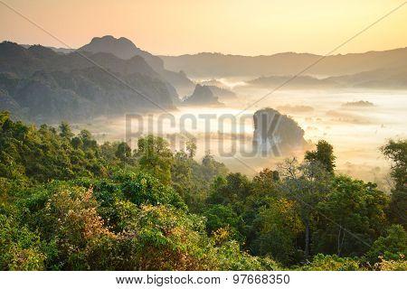 Morning Mist At Phu Lang Ka, Phayao, Thailand