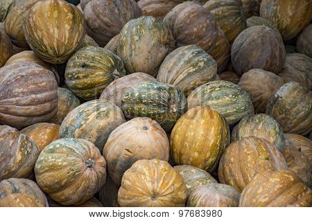 Yellow Green Pumpkins